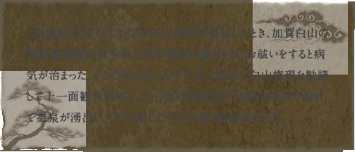 「聖武帝の天平八年(736年)に疱瘡が蔓延したとき、加賀白山の開創者泰澄の弟子浄定坊が関東に遣わされ、お祓いをすると病気が治まった。そこで浄定は、天平十年に湯本に白山権現を勧請して十一面観音を刻み、十一面の修法を行うと湯本の山が裂けて霊泉が湧出し、それに浴した人々は悉く疱瘡が治った。」